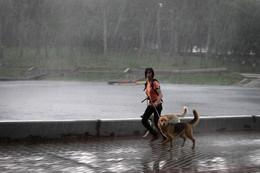 У природы нет плохой погоды / Ливень в городе
