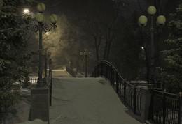 ночь в парке / зимняя ночь в парке