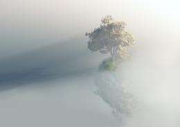 Свет и тени... / отражения