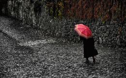 Осенний дождь. / Осень. Дождь. Зонтик.