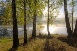 Рассвет,туман / Бабье лето туманное !!!!