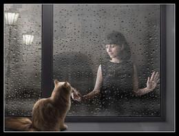 Дождь... / ***