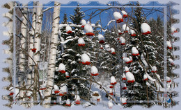 Боярыня в песцовых шапках / Хочу искупать всех в новогодней сказке, чтобы вы поверили в чудеса и сами стали волшебником ! Праздника в душе, сердце и в доме !