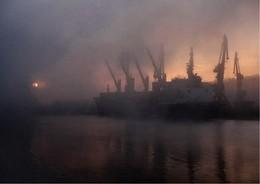 Fog / Туман