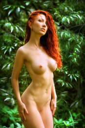 Девушка леса...3.. / ***