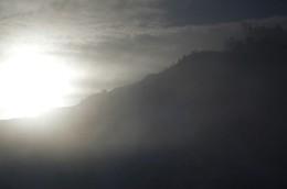Рифма утреннего света / ***