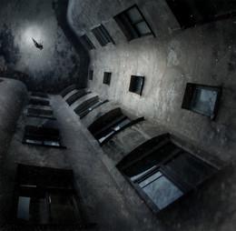 Полёты ночного Петербурга... / Работа сделана из моих фотографий отснятых в разных местах и разное время... Сводилось в PS CC..