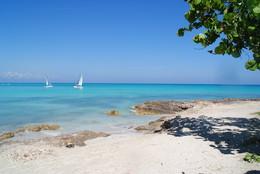 ідеальний пляж / океан