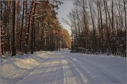 """""""хвоя"""" против """"листвы"""" / прекрасный зимний день,путь на дачу"""