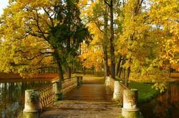 В парке / Осеннее утро в Александровском парке