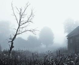 """Нет ничего на земле постоянного... / """"Из дебрей туманы несмело  Родное закрыли село ...""""  А.Фет"""
