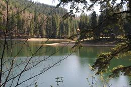 Синевір / Озеро у горах.Висота 989 м над рівнем моря.