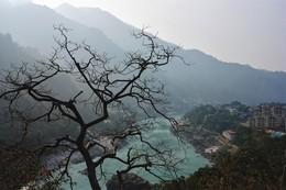 Без названия / Ришикеш, Индия, декабрь 2015