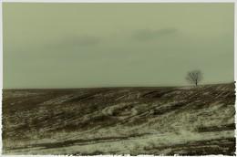 Одиночество / Экзистенциальная изоляция