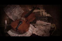 забытая мелодия для скрипки... / натюрморт
