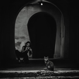 """Кошки / из серии """"Чёрные кошки"""""""