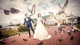 Любовь и голуби / ***