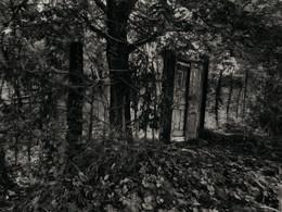 и была в том лесу дверь... / ***