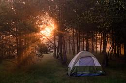Утро туманное: сон туриста. / Туманное утро в лесу около Желтого Берега, фотография про туриста, который любит смотреть рассветы на фотографиях.