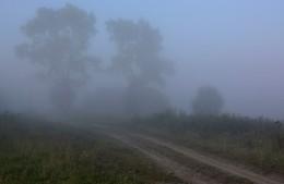 """""""Я был разбужен спозаранку"""" / """"Был утренник. Сводило челюсти.  И шелест листьев был как бред ...""""  Б.Пастернак"""