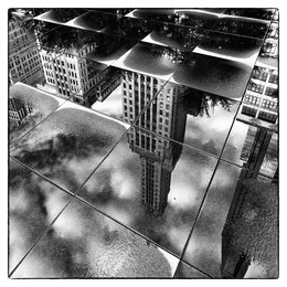 Лужа, отражение / Чикаго