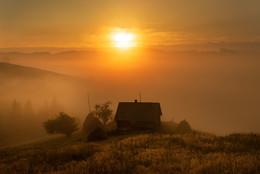 утренний туман.. / Карпаты