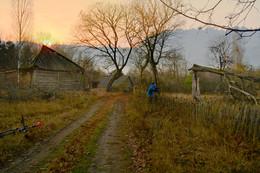 Поднялся рассвет на крышей / Беловежская Пуща. Ноябрь