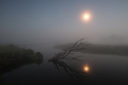 Скромное очарование ночи / Ночь туман Луна