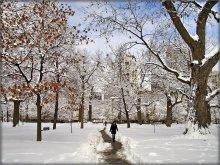 горад зусім асьлеп.. / Toronto, Queen's Park