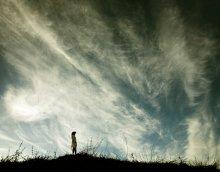 sky (around) / .........