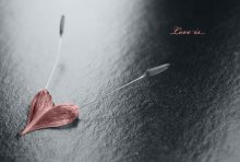 Love is... / ...