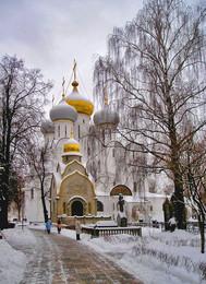 Зима в Новодевичем / г. Москва