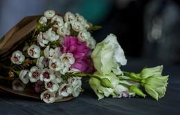 Bouquet / 23/08/2016