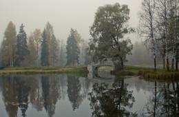Осеннее утро... / гатчинский парк