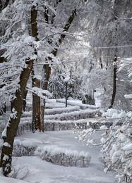 Первый снег -2 ... / Как то так ...