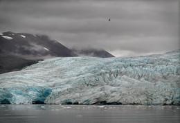Не бабье лето / Август, холодно. Ледник Норденшёльд, Шпицберген