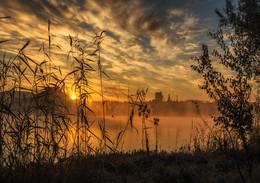 Утро осеннее, утро Донецкое... / Донецк, октябрь 2016 http://www.youtube.com/watch?v=tWCZbHDXLGQ&t=8s