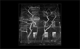 Без названия / Малая Бронная 13, строение 1. Точная дата осень 1960г.