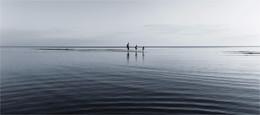Морская болезнь / репост к пятнице