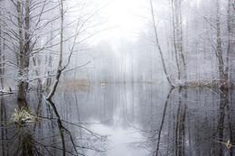 Осенний сон / А снег нам только снится ... пока