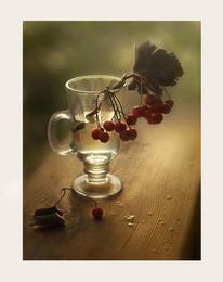 с боярышником / осень, стакан, боярышник