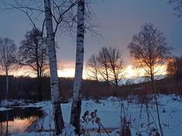Скоро вечер... / Ясная Поляна, поздняя осень- почти зима
