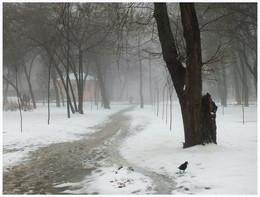 / Днепр, зима. снег, туман