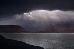 Параллельные миры / Небо Арктики – оно безумное, оно меняется каждую минуту, оно разное везде, куда бы ты ни бросил взгляд. Небо Арктики накрывает всё вокруг, и не понять, где кончается океан и начинаются облака. Кажется, что горизонта нет и небо повсюду: над головой и под ногами. Небо Арктики всегда рядом, оно настолько близко, что приходится нагибаться, иначе потеряешь шапку, зацепив тучу головой.  Можно протянуть руку, оторвать кусок облака, попробовать на вкус и положить в рюкзак. Но, не нужно увозить его домой, ведь Небо Арктики ты не забудешь никогда