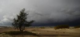 Ветрено.... / Сестрорецк. Финский залив. Октябрь