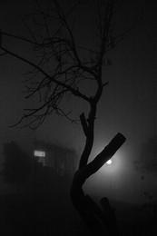 / Туман