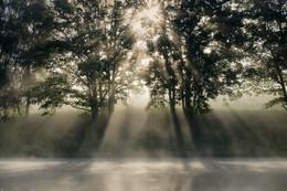 Рассветные лучи / Рождение нового дня