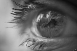Отражение | Reflection / ...
