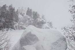 Белая пятница / Выборг, Монрепо. не ч/б, просто снежный день