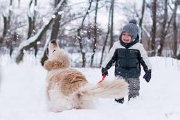 игра в снежки / еще вопрос кому больше нравится эта игра